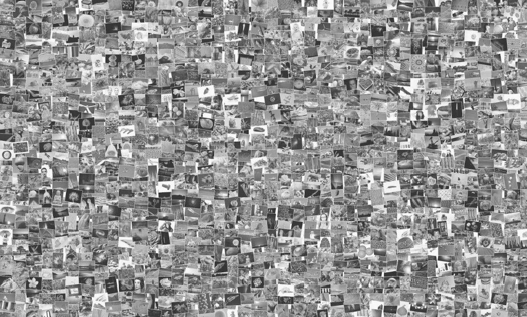 Sehr viele Fotos/M-Box Archivsoftware bringt Ordnung